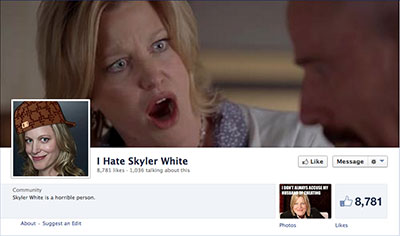 i_hate_skyler_white